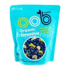 Oob Organic Organic Smoothie Frozen Blueberry, Kiwifruit & Banana