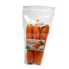 Nusantara Premium Carrot