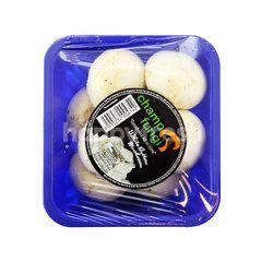 CHAMP FUNGI White Button Mushroom