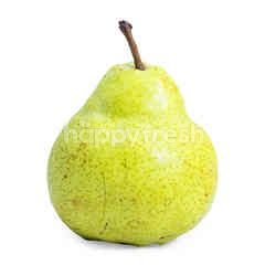 African Green Pear