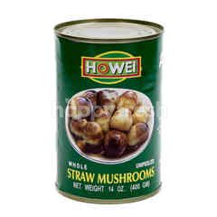 Howei Straw Mushrooms