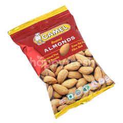 Camel Roasted Almond