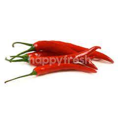 Local Red Chilli