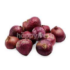 Red Rose Shallot Onion