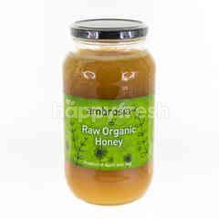 Ambrosia Raw Organic Honey