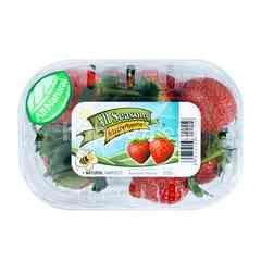 All Seasons Strawberries
