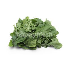 GENTING GARDEN Fresh Rocket Salad