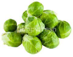 Australlian Brussel Sprout