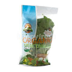 Organic Land Caisim