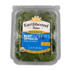 Earthbound Farm Baby Spinach