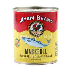 AYAM BRAND Mackerel