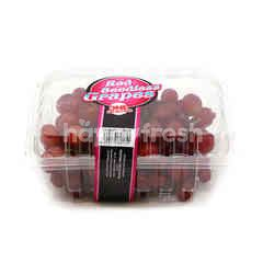 One Selection Red Seedless Grape
