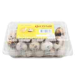 Supawan Partridge Eggs