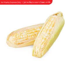 Natural & Premium Food Organic Sweet Corn