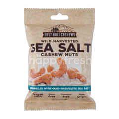 East Bali Cashews Kacang Mede Rasa Garam Laut