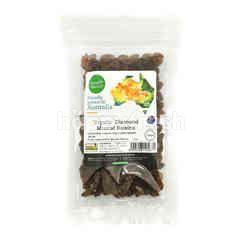 SIMPLY NATURAL Organic Diamond Muscat Raisins