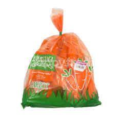 Brastagi Greens Carrot