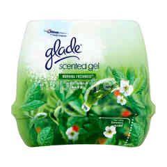 Glade Scented Gel (Morning Freshness)