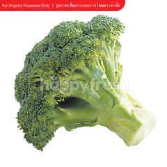 Ek Thai Broccoli