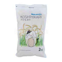 Koshihikari Japonica Rice