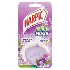Harpic Hyegienic Toilet Block 4