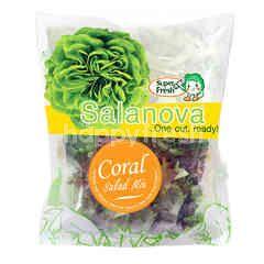 Super Fresh Coral Salad Mix