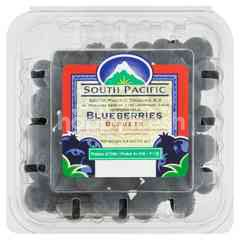 African Blue Blueberries