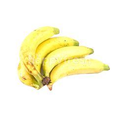 Dole Cavendish Banana (4 Pcs)