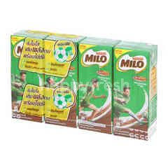 Milo Activ-Go UHT Chocolate Milk (8 Packs)