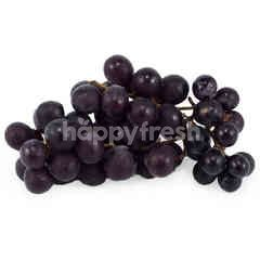 Seedless Black Grapes