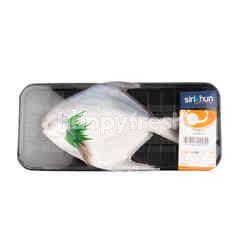 Gourmet Market Silver Pomfret Fish