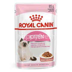 Royal Canin Kitten Wet Pouch Cat Food (In Gravy)