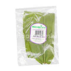 Edsam Turmeric Leaf (Daun Kunyit)