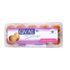 Oval Chicken Egg