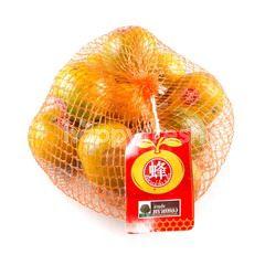 สวนส้มทรายทอง ส้มสายน้ำผึ้ง