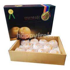 Pir Singo Korea Kotak Hadiah