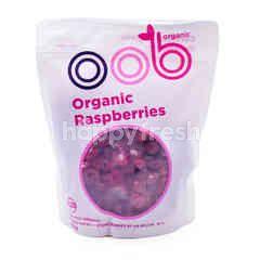 Organic Raspberries Frozen Fruit