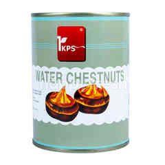 IKPS Water Chestnut