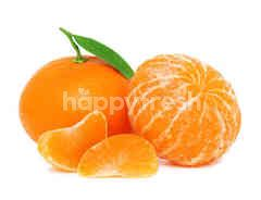 FreshBox Murcot Orange