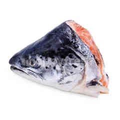 Fresh Norwegian Af Salmon Head