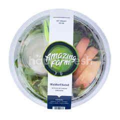 Amazing Farm Organic Waldrof Salad + Blue Cheese Dressing