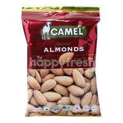 Camel Roasted Almond