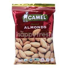 Camel Almond Panggang