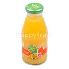 สปริง วัลเลย์ น้ำส้ม
