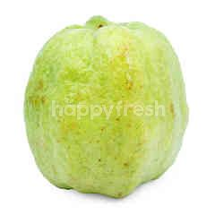 Crystal Seedless Guava