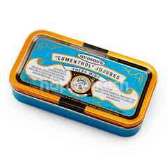 Hudson's Eumenthol Jujubes Fresh Mint