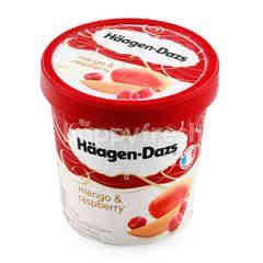 ฮ้าเก้น-ดาส แมงโก้แอนด์ราสพ์เบอร์รี่ ไอศกรีม