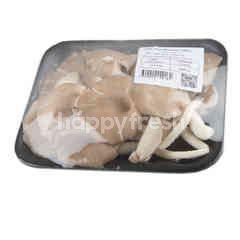 Tesco Oyster Mushroom