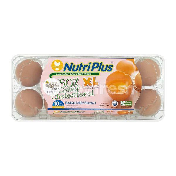 Nutriplus Xl 50% Lower Cholesterol Eggs