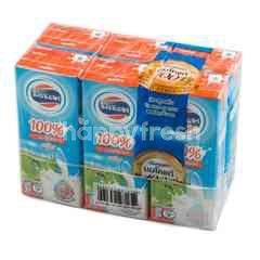Foremost UHT Plain Milk
